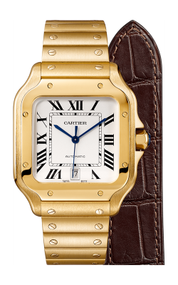 Cartier Santos de Cartier Watch WGSA0009 product image