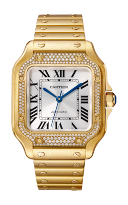 Santos de Cartier Watch WJSA0010 product image