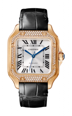 Santos de Cartier Watch WJSA0007 product image