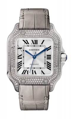 Santos de Cartier Watch WJSA0006 product image