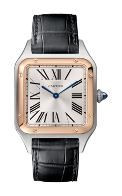 Cartier Santos Dumont Watch W2SA0011 product image