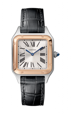 Cartier Santos Dumont Watch W2SA0012 product image