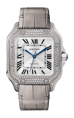 Santos De Cartier Watch WJSA0014 product image