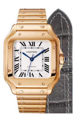 Santos De Cartier Watch WGSA0008 product image