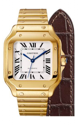 Cartier Santos De Cartier Watch WGSA0010 product image