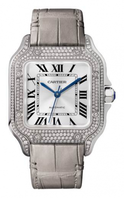 Cartier Santos De Cartier Watch WJSA0006 product image