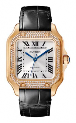 Cartier Santos De Cartier Watch WJSA0007 product image