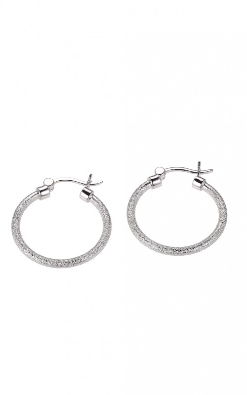 Charles Garnier CXE3061W25 Earrings product image