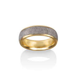 Chris Ploof Meteorite Wedding Band MT-VEGA product image