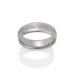 Chris Ploof Meteorite Wedding Band MT-CANOPUS product image