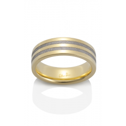 Chris Ploof Meteorite Wedding Band MT-POLARIS product image
