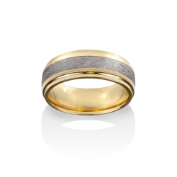 Chris Ploof Meteorite Wedding Band MT-RIGILKENTAURUS product image