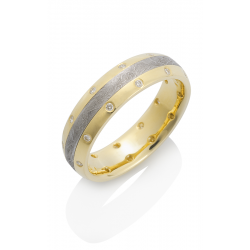 Chris Ploof Meteorite Wedding Band MT-CANOPUS-22DI product image