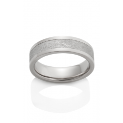 Chris Ploof Meteorite Wedding Band MT-CAPELLA product image