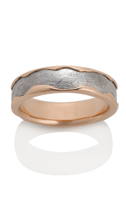 Chris Ploof Meteorite Ring MT-ARCTURUS-R product image