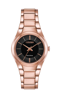 Citizen Paradigm FE2093-54E