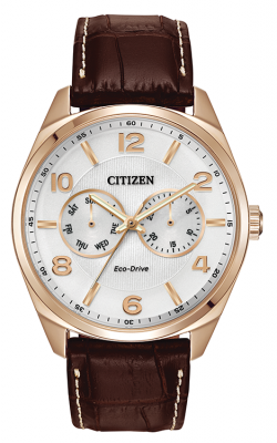 Citizen Men's Dress Watch AO9023-01A product image