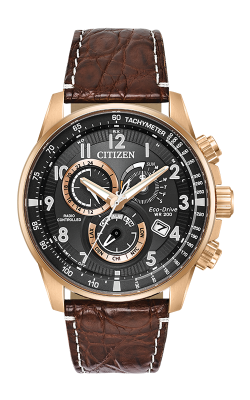Citizen PCAT Watch AT4133-09E product image