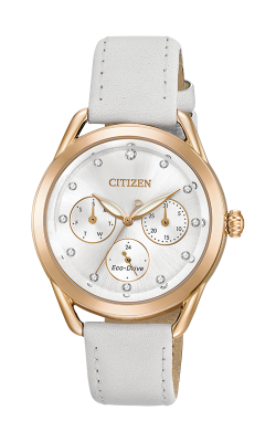 Citizen LTR Watch FD2053-04A product image