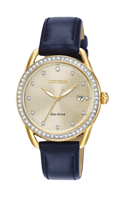 Citizen LTR Watch FE6112-09P product image