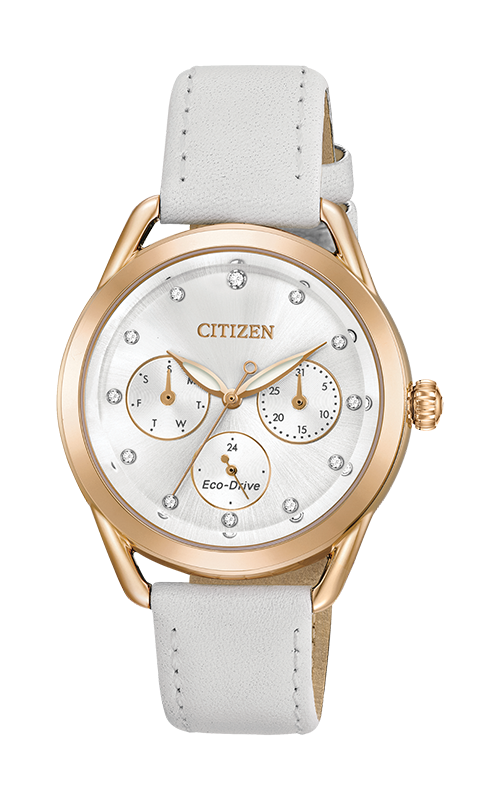 Citizen LTR Watch FD2053-04A product image