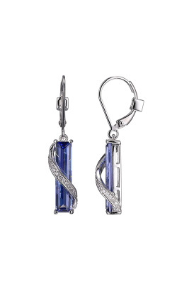 Elle Bold Revolution Earrings E10058WTZ product image