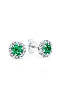 Fana Gemstone Earring ER1496E product image