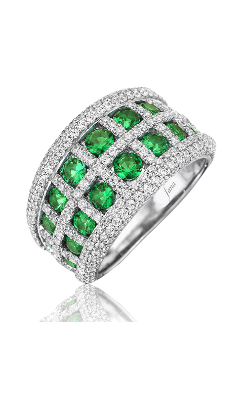 Fana Gemstone Fashion ring R1541E product image