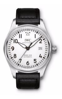 IWC Pilot's IW327002
