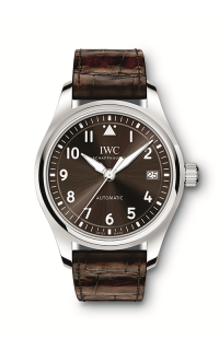 IWC Pilot's IW324009