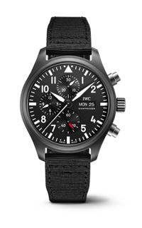 IWC Pilot's IW389101