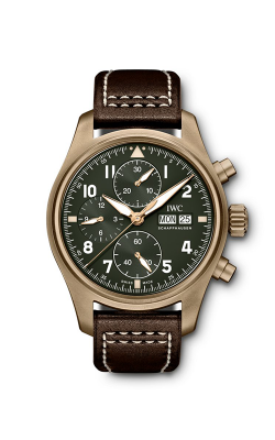 IWC Pilot's Watch IW387902 product image