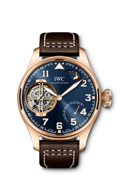 IWC Pilot's Watch IW590303 product image