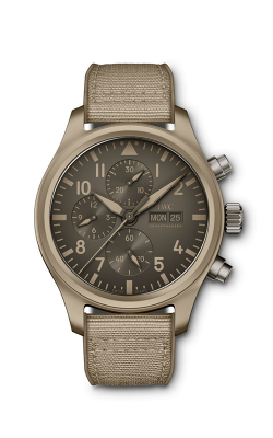 IWC Pilot's Watch IW389103 product image