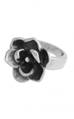 King Baby Studio Fashion ring K20-5940-6 product image
