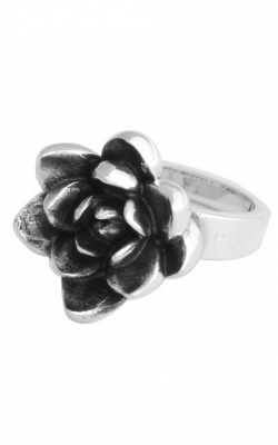 King Baby Studio Fashion ring K20-5941-6 product image