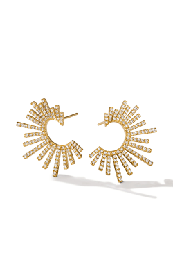 Le Vian Earrings ASNU 36 product image