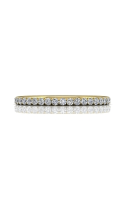 Martin Flyer Eternity Wedding band DWBFM4YQ-.50-C product image