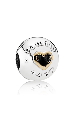 Pandora Mother's Day Family & Love Charm 792110 product image
