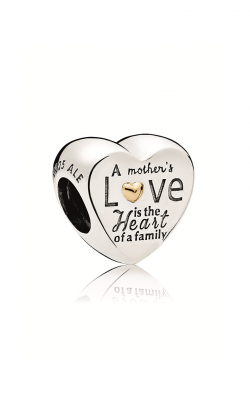 PANDORA Heart of the Family Charm 796265 product image