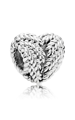 Pandora Icon Of Nature Charm 797618 product image