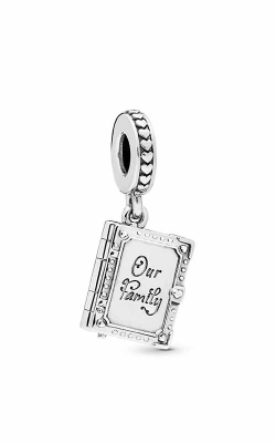 PANDORA Family Book Dangle Charm 798105 product image