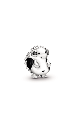 Pandora Nino The Hedgehog Charm 798353EN16 product image