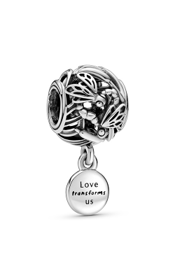 Pandora Openwork Dragonfly Love Charm 798814C00 product image