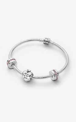 Pandora Mom Of The Year Bracelet Gift Set B801315 product image