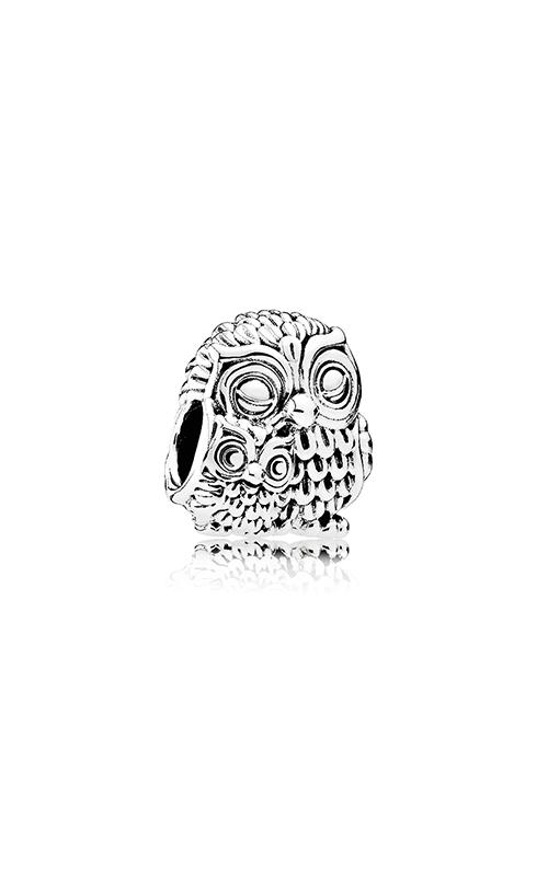 PANDORA Charming Owls Charm 791966 product image