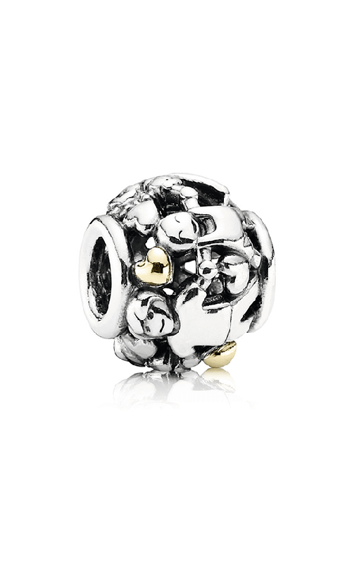 Pandora Family Forever Charm 791040 product image