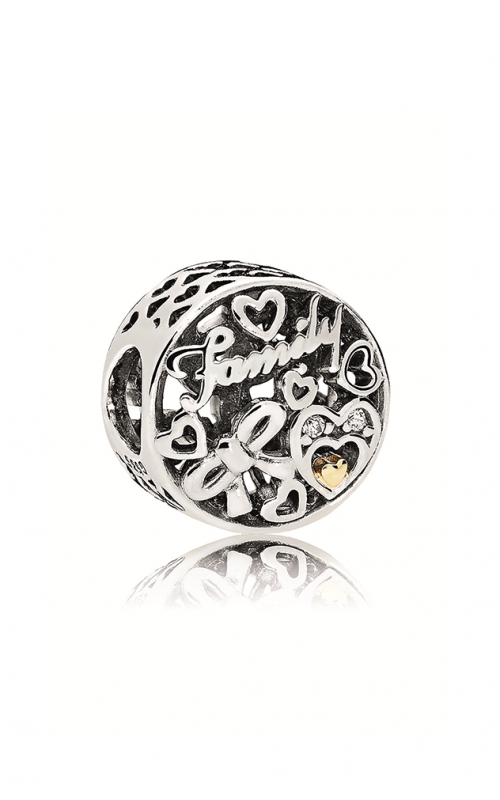 PANDORA Family Tribute Charm Clear CZ 796267CZ product image