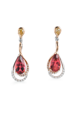 Parade In Color Earrings E2506 P4-WRFS product image