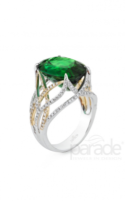Parade In Color Fashion Ring R3021-O1-WYFS product image